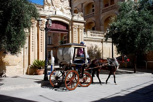 The Natural History Museum, Mdina