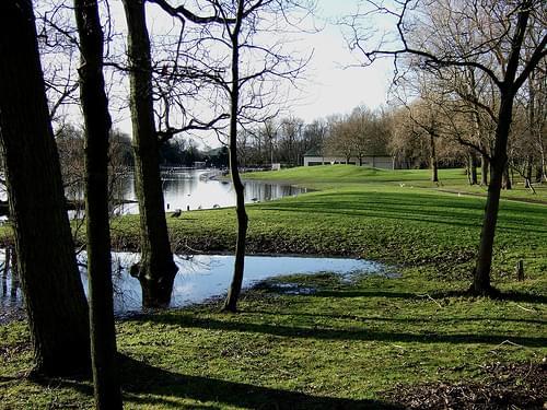 Stanley Park in December