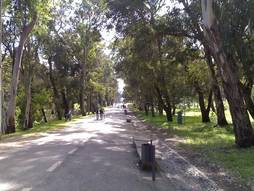 Monsanto Park