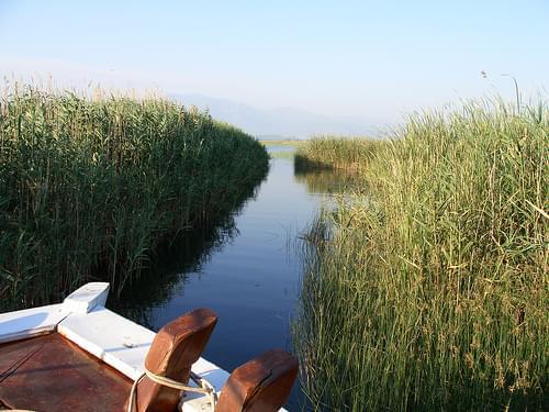 Köyceğiz Lake boat trip
