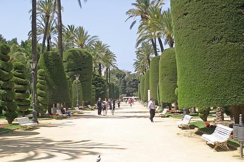 IMG_8076 Cadiz Park