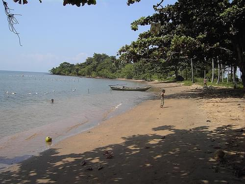 beach on rabbit island