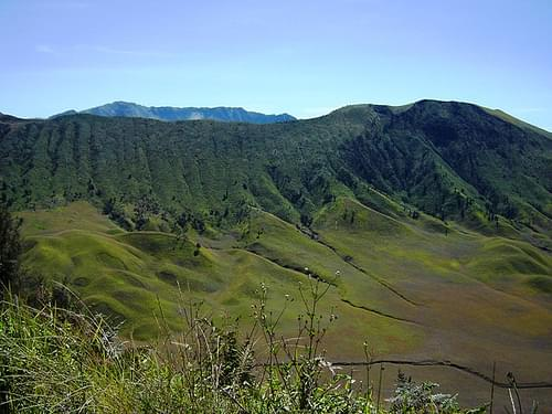 The view of grassland at Bromo - Tengger - Semeru National Park, photographed by JavaTourism.com