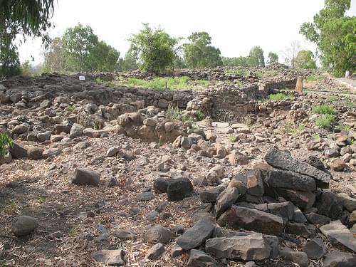 Bethsaida Long View