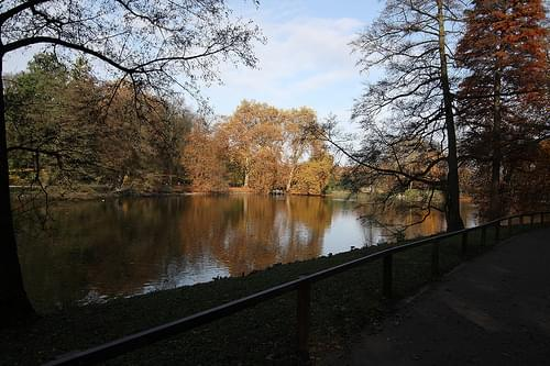 Rombergpark, 1.11.2009