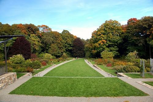 Arnold Arboretum: Isn't this