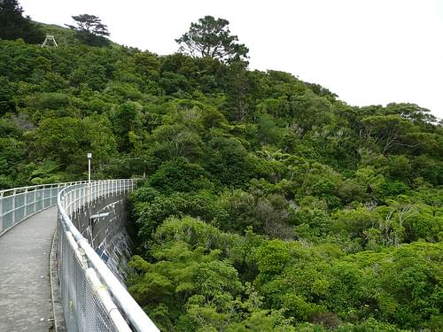 Zealandia Wildlife Sanctuary, Wellington