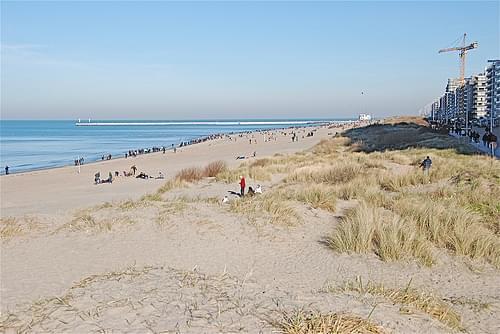 Les dunes de Nieuwpoort