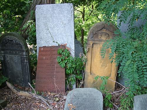 Day 2: tombstones in the jewish cemetery of Warsaw