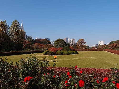 Shinjuku Gyoen National Garden