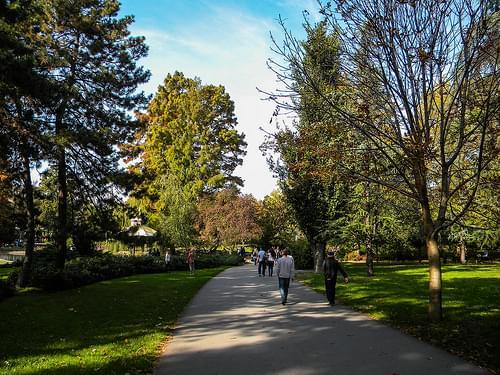 City park, Novi Sad