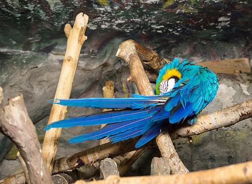 Riga Zoo visit