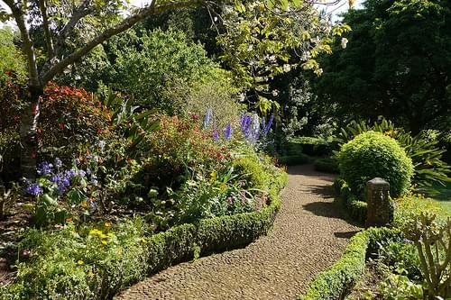 Funchal - Jardins de la Quinta do Palheiro Ferreiro