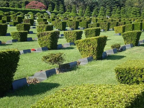 United Nations Memorial Cemetery in Korea (Busan)