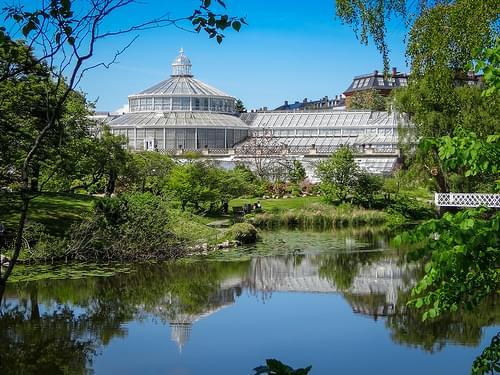 Copenhagen 2014 -botanical gardens