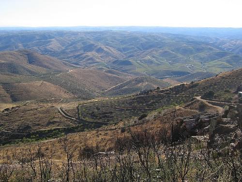 The Coa Valley