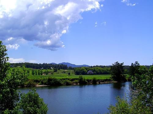 Bellinger River National Park