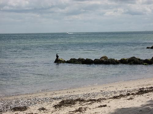 Playa cercana a Aarhus 2