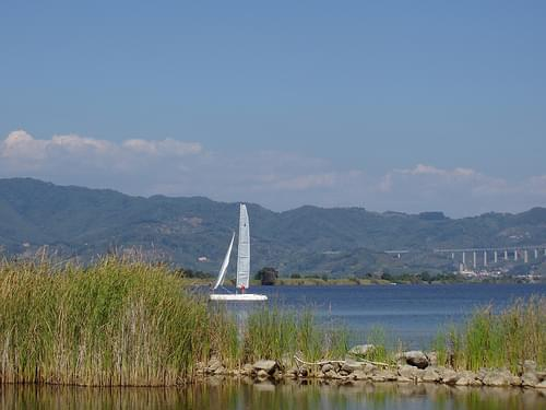 Torre del Lago, sailboat on the lake