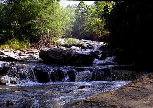 fsa1025 Doi Intanon National Park