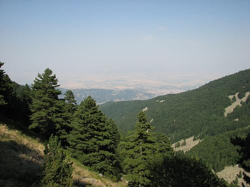 Pelister National Park - Macedonia