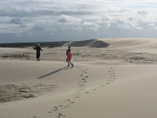 Dune - (Rabjerg Mile DK)