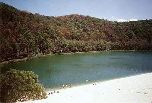 Lake Wabby, Fraser Island, QLD