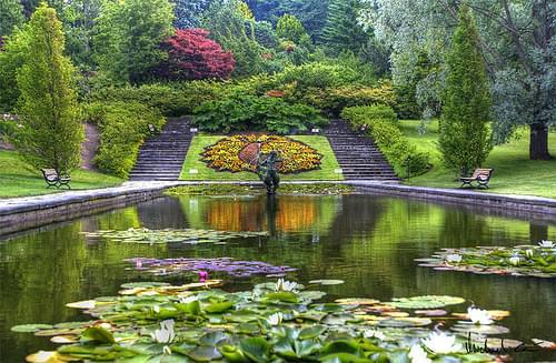Göteborg Botanical Garden