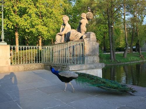 Łazienki Królewskie w Warszawie (Lazienki park)
