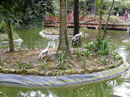 Künstliche Lagune im Bird Paradise