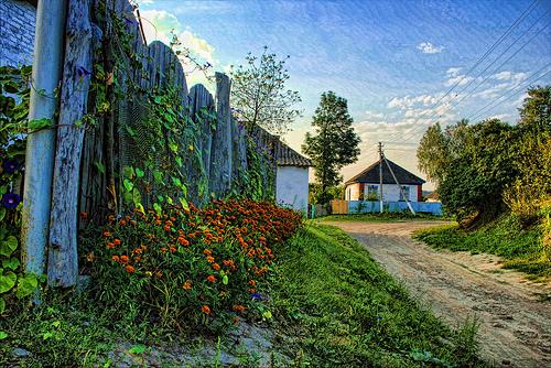 ukrainian village    8