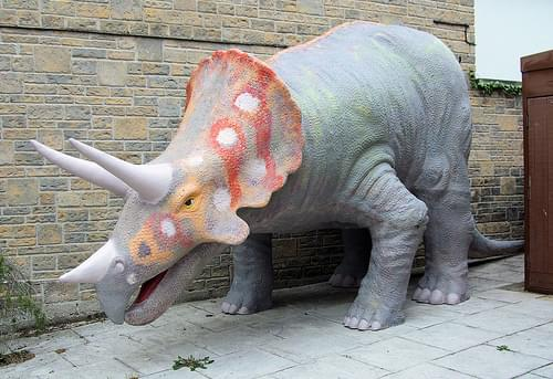 Triceratops, Dinosaur Museum, Dorchester.