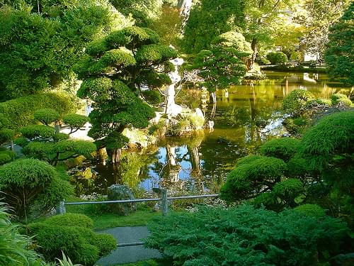 Japanese Tea Garden [06]