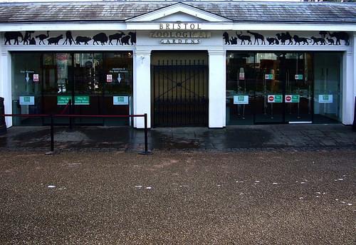 Bristol Zoological Gardens