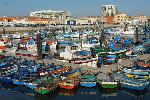 Fishing harbour in Setubal