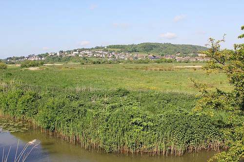 Brading Marshes