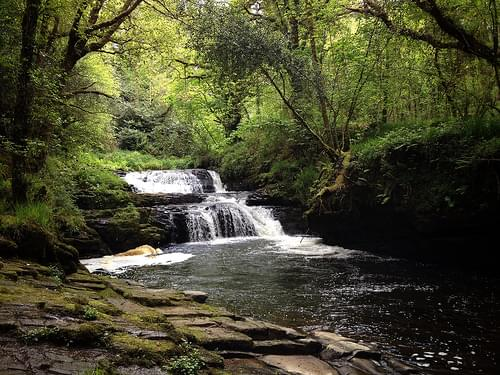 Clare Glens, Co Tipperary & Limerick
