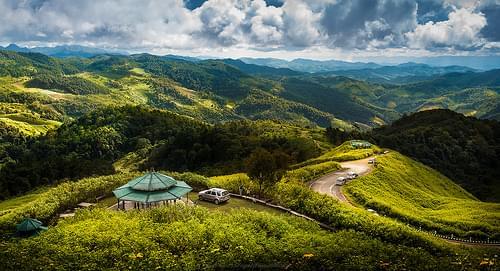Bua-Tong