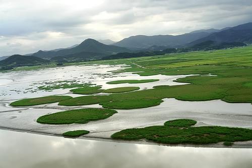 순천만 (Suncheon Bay)2007년 9월18일 (17)