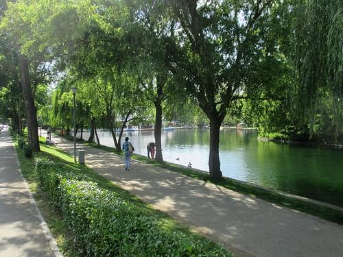 Cluj-Napoca - Central Park