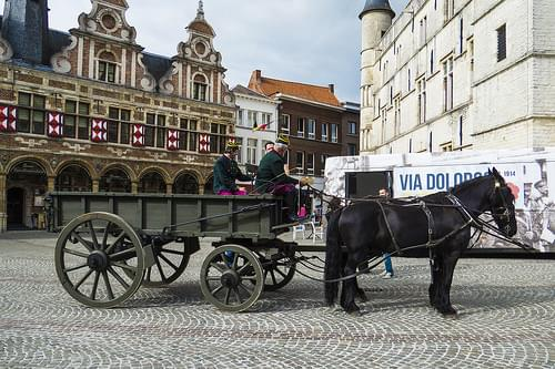 Horses and Carriage at Town Square