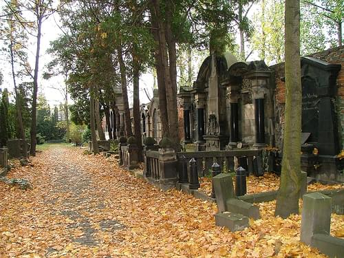 Old Jewish Cemetery of Wroclaw (Poland) - German Grave