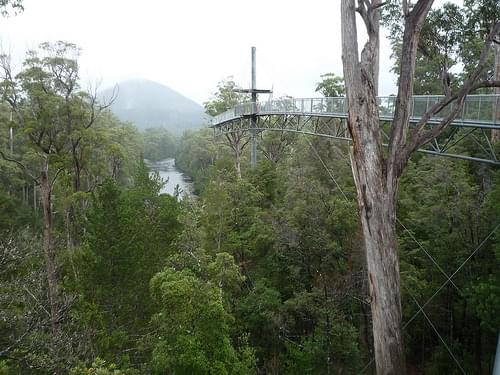 Tahune Forest Tahune Forest Air Walk