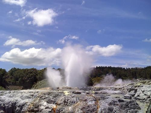 Geyser, Te Puia, Rotorua