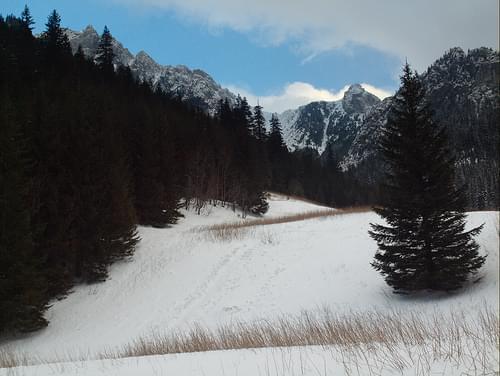 Dolina Kościeliska (Koscieliska Valley)