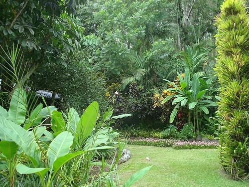 Fiji Gardens