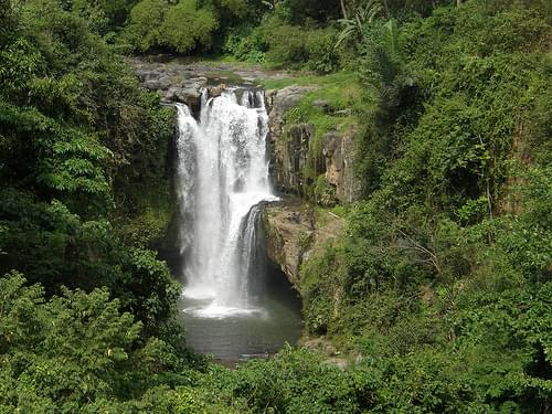 774 Bali - Ubud - Cascada Tegenungan