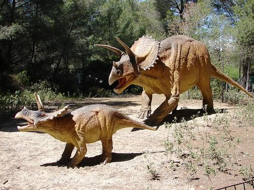 Triceratops at Dinopark Meze