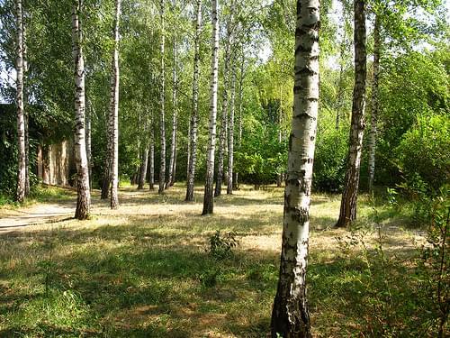 2008 08 19 - 3410 - Uman' - Sofiyivka Park