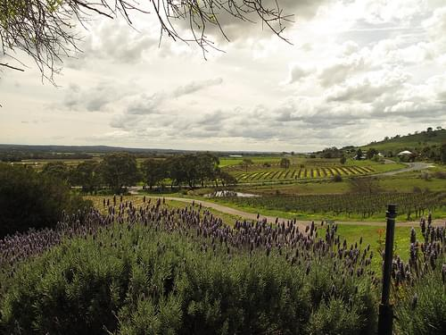 View from Bethany, Barossa Valley South Australia